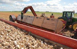 TV: Landbouw heeft goede brexitdeal nodig