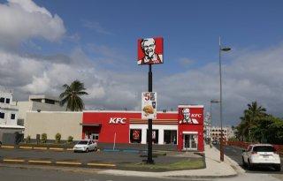 KFC+om+naar+Europese+normen+dierenwelzijn