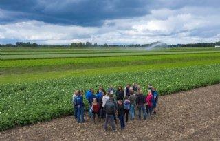 Strokenteelt+ERF+inspireert+innovatieve+boeren