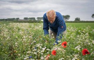 Tegen de stroom in boeren voor een mooier landschap