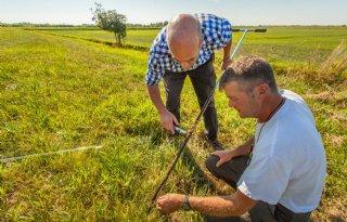 Waterschap+inspecteert+dijken+Zuidwest%2DFriesland