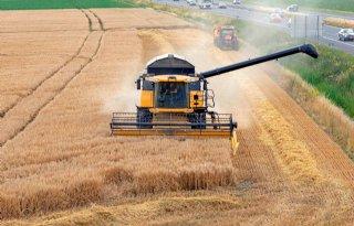 Vijf megatrends beïnvloeden agrifood