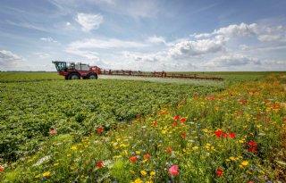 Drenthe+breidt+areaal+agrarisch+natuurbeheer+uit