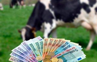 Extensivering melkveebedrijven vergt publiek geld