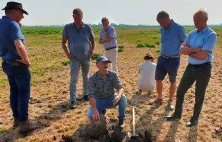 Schatting+expert%3A+muizenschade+op+20%2E000+hectare