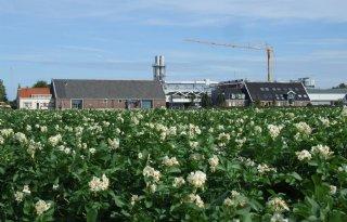 Farm+Frites+bouwt+fabriek+in+Kazachstan