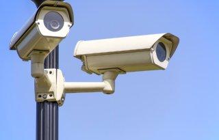 NVWA houdt grote slachthuizen met camera's in de gaten
