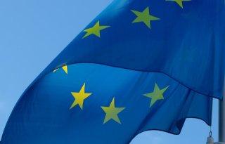 Ngo%27s%3A+voedsel+hoger+op+EU%2Dagenda