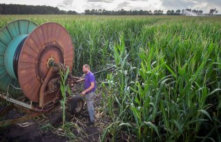Boeren+eisen+onderbouwing+beregeningsverbod