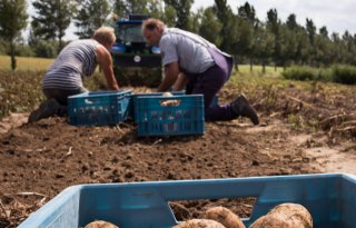 Minder+boeren+in+Noord%2DNederland