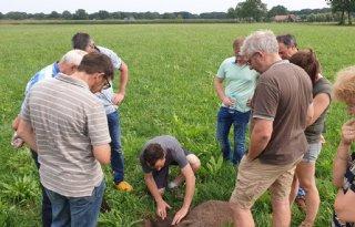 Leren over robuuster maken van grasland