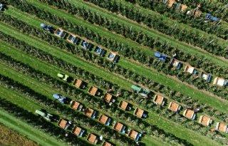 Vijf vragen over financiering van middelgrote zonprojecten