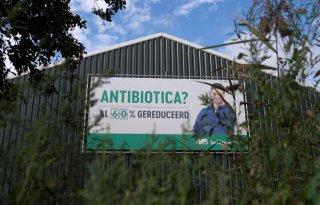 Antibioticagebruik in de dierhouderij neemt verder af