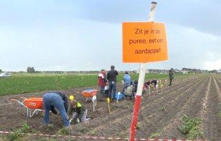 TV: Zelf oogsten bij de Lelystadse boer