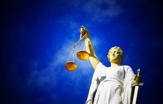Rechtszaak+ZLTO+en+POV+tegen+Brabants+milieubeleid