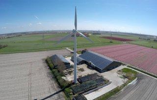 Wind- en zonneparken Eneco verdubbelen in grootte