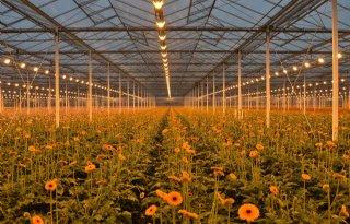 Tuinbouwsector+presenteert+rekenregels+voor+milieufootprint