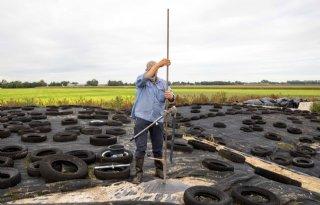 PPP-Agro: 'Houd mineralen kuilgras in de gaten'