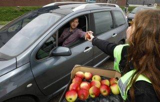 Filefruitteam+deelt+appels+uit