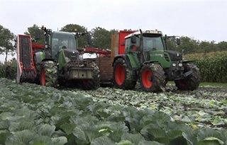Belgische akkerbouwer betaalt gemiddeld 304 euro pacht
