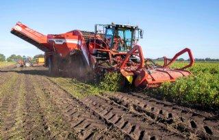 Grimme Ventor 4150 aardappelrooier klapt loof bij Sandee