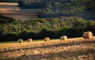 Economische+situatie+Duitse+landbouw+verslechtert