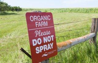 Veel+Amerikaanse+landarbeiders+besmet+tijdens+oogstpiek