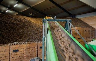Kleine+oogst+houdt+aardappelmarkt+in+balans