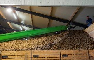 Schaderegeling+voor+sierteelt%2C+tuinbouw+en+aardappeltelers