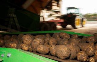 Aardappelmarkt+maakt+serieuze+knieval+door+coronavirus