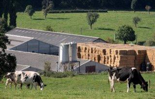Twee+op+de+drie+Belgische+boeren+weg+in+veertig+jaar
