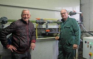 Melkveehouders pionieren met algen