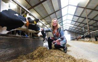 LTO+Melkveehouderij%3A+%27Berichtgeving+over+KoeMonitor+vaak+onterecht%27