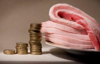 LTO%3A+vleestaks+draagt+niet+bij+aan+verduurzaming