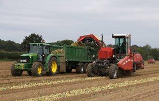 Britse boeren waarschuwen voor lagere eisen aan voedsel