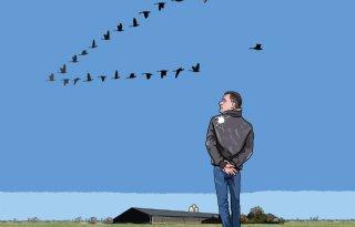 Dreiging+vogelgriep+niet+verontrustend