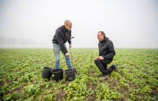 Project helpt melkveehouders nitraatnorm te halen