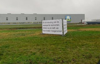 A-ware Heerenveen mist helft kunstkoeien