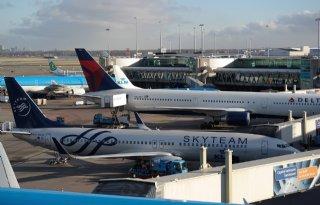 Illegale+anjers+uit+Ecuador+bij+luchthaven+Schiphol