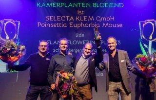 FloraHolland+reikt+vijf+Glazen+Tulpen+uit