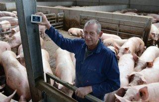 Data stalklimaat bevestigen relatie met diergezondheid