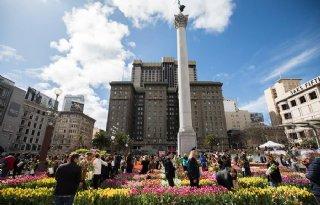 Anthos begint promotiecampagne in Verenigde Staten