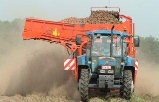 Belgen+starten+brancheorganisatie+voor+aardappelen