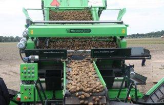 Aardappelmarkt+wacht+op+impuls