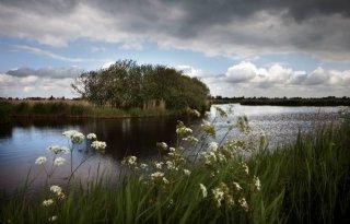 Overheid+en+natuur+zetten+plan+Amsterdam+Wetlands+door