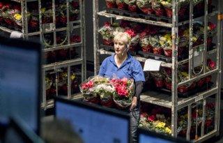 Brabant bevestigt vrees Landbouw Collectief