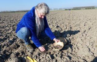 Weidevogelkenner: 'Gebrek aan voedsel grootste knelpunt'