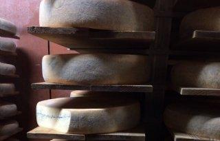 Zieken+in+Frankrijk+door+rauwmelkse+kaas