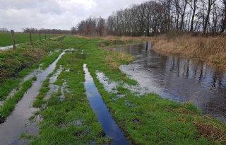 Ruis+op+lijn+tussen+boeren+en+waterschap+Aa+en+Maas