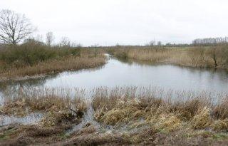 Nogmaals bevestigd: schrappen Natura 2000 geen optie
